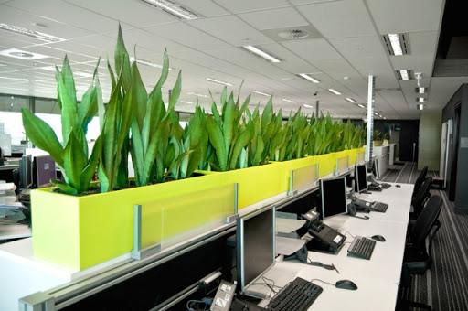 Ý tưởng thiết kế những mẫu văn phòng đơn giản